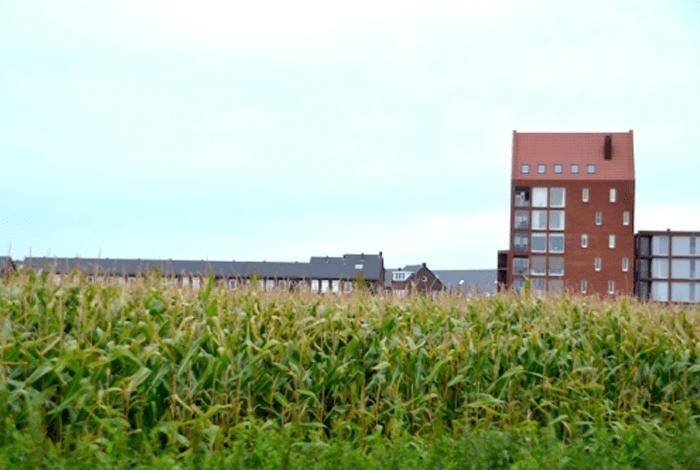 Project Stadshagen, Zwolle